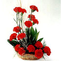 Erzincan çiçek satışı  sepet içerisinde 17 adet karanfil tanzimi