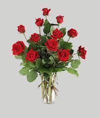 Erzincan çiçek satışı  11 adet kirmizi gül vazo halinde