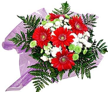 gerbera ve krizantem demeti  Erzincan yurtiçi ve yurtdışı çiçek siparişi