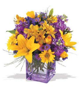 Erzincan çiçekçiler  cam içerisinde kir çiçekleri demeti