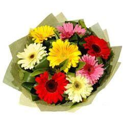 9 adet karisik gerbera demeti  Erzincan çiçekçiler