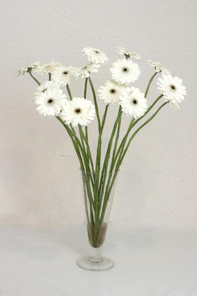 Erzincan çiçekçiler  cam vazo içerisinde 17 adet sade gerbera