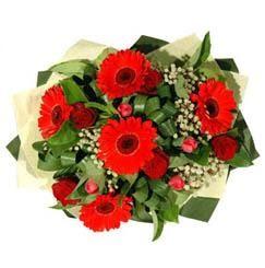 Erzincan kaliteli taze ve ucuz çiçekler   5 adet kirmizi gül 5 adet gerbera demeti