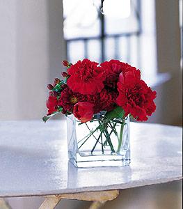 Erzincan kaliteli taze ve ucuz çiçekler  kirmizinin sihri cam içinde görsel sade çiçekler