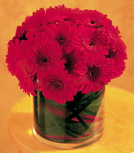 Erzincan kaliteli taze ve ucuz çiçekler  23 adet gerbera çiçegi sade ve sik cam içerisinde