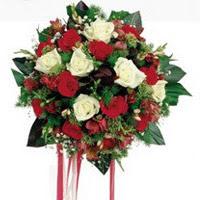 Erzincan kaliteli taze ve ucuz çiçekler  6 adet kirmizi 6 adet beyaz ve kir çiçekleri buket