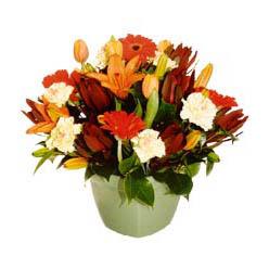mevsim çiçeklerinden karma aranjman  Erzincan cicekciler , cicek siparisi
