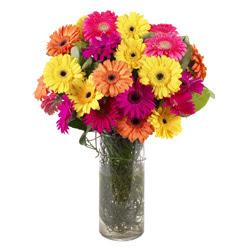 KARISIK GERBERALARDAN CAM VAZO TANZIMI  Erzincan çiçek siparişi vermek