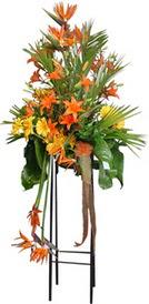 Erzincan online çiçekçi , çiçek siparişi  perförje tanzimi dügün nikah ve açilislara