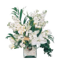 Erzincan çiçek gönderme sitemiz güvenlidir  sadece beyazlardan olusmus mevsim cam yada mika tanzim