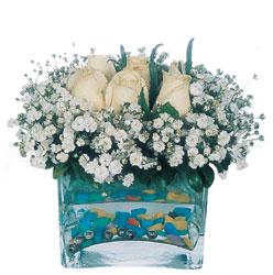 Erzincan yurtiçi ve yurtdışı çiçek siparişi  mika yada cam içerisinde 7 adet beyaz gül
