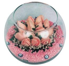 Erzincan çiçek yolla , çiçek gönder , çiçekçi   cam fanus içerisinde 10 adet gül