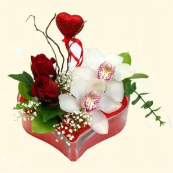Erzincan çiçekçi mağazası  1 kandil orkide 5 adet kirmizi gül mika kalp