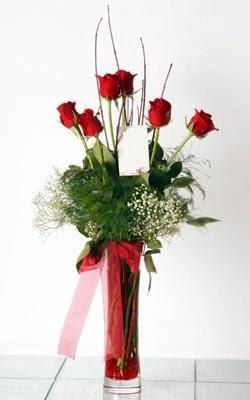 Erzincan çiçek satışı  6 adet kirmizi gül ve cam yada mika vazo