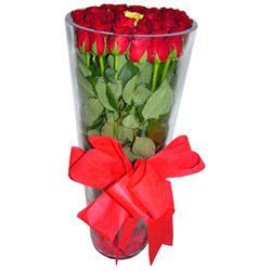 Erzincan çiçek siparişi sitesi  12 adet kirmizi gül cam yada mika vazo tanzim