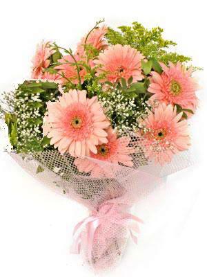 Erzincan çiçek servisi , çiçekçi adresleri  11 adet gerbera çiçegi buketi