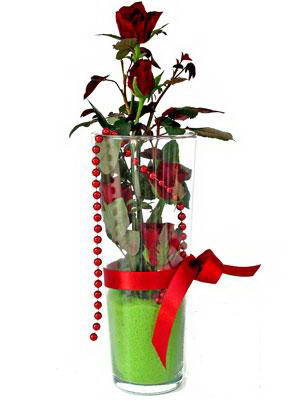 Erzincan çiçek gönderme  Cam yada mika içerisinde 9 adet kirmizi gül - sevdiklerinize özel