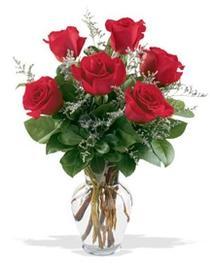 Erzincan 14 şubat sevgililer günü çiçek  7 adet kirmizi gül cam yada mika vazoda sevenlere