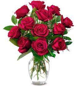 Erzincan çiçek gönderme  1 düzine kirmizi gül sevenlere özel vazo gülleri