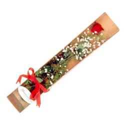 Erzincan çiçek mağazası , çiçekçi adresleri  Kutuda tek 1 adet kirmizi gül çiçegi