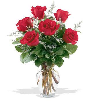 Erzincan çiçek satışı  cam yada mika vazoda 6 adet kirmizi gül