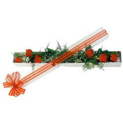 Erzincan online çiçekçi , çiçek siparişi  6 adet kirmizi gül kutu içerisinde