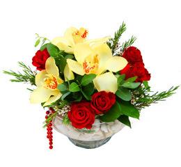 Erzincan hediye sevgilime hediye çiçek  1 adet orkide 5 adet gül cam yada mikada