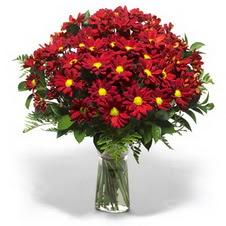 Erzincan anneler günü çiçek yolla  Kir çiçekleri cam yada mika vazo içinde