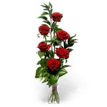 Erzincan online çiçekçi , çiçek siparişi  cam yada mika vazo içerisinde 6 adet kirmizi gül