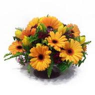 gerbera ve kir çiçek masa aranjmani  Erzincan çiçek yolla