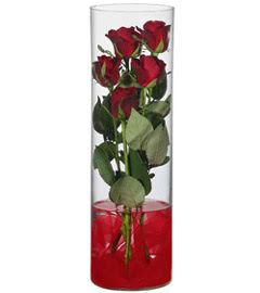 cam içerisinde 7 adet kirmizi gül  Erzincan İnternetten çiçek siparişi