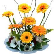 camda gerbera ve mis kokulu kir çiçekleri  Erzincan çiçek online çiçek siparişi
