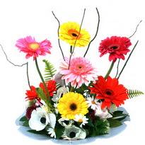 Erzincan güvenli kaliteli hızlı çiçek  camda gerbera ve mis kokulu kir çiçekleri