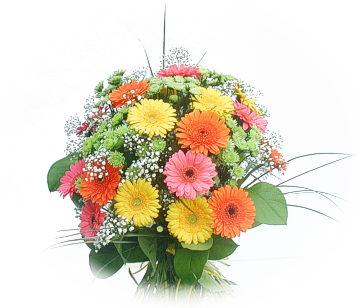 13 adet gerbera çiçegi buketi  Erzincan çiçek gönderme
