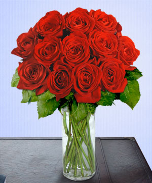 Anneme 12 adet cam içerisinde kirmizi gül  Erzincan online çiçekçi , çiçek siparişi