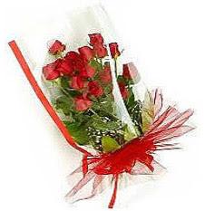 13 adet kirmizi gül buketi sevilenlere  Erzincan çiçek yolla