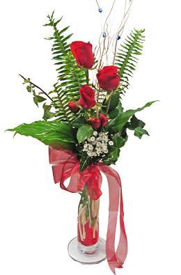 Çiçek gönderin cam vazoda 3 gül çiçekleri  Erzincan online çiçekçi , çiçek siparişi