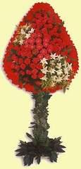 Erzincan hediye sevgilime hediye çiçek  dügün açilis çiçekleri  Erzincan çiçek siparişi sitesi