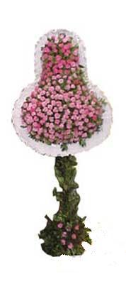 Erzincan kaliteli taze ve ucuz çiçekler  dügün açilis çiçekleri  Erzincan çiçek gönderme sitemiz güvenlidir
