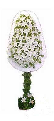 Erzincan online çiçekçi , çiçek siparişi  nikah , dügün , açilis çiçek modeli  Erzincan çiçek gönderme