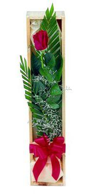 1 adet kutuda kirmizi gül  Erzincan 14 şubat sevgililer günü çiçek