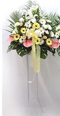 Erzincan çiçek gönderme   perförje çiçegi dügün çiçekleri