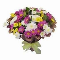 Erzincan çiçek online çiçek siparişi  Mevsim kir çiçegi demeti