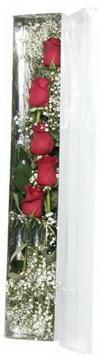 Erzincan online çiçekçi , çiçek siparişi   5 adet gülden kutu güller