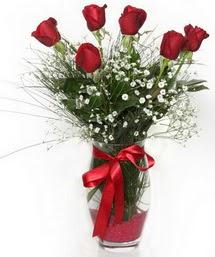 7 adet gülden cam içerisinde güller  Erzincan ucuz çiçek gönder
