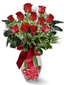 9 adet gül  Erzincan çiçek yolla , çiçek gönder , çiçekçi   kirmizi gül
