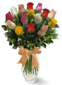 15 adet vazoda renkli gül  Erzincan çiçek yolla , çiçek gönder , çiçekçi