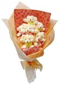12 adet ayiciktan buket  Erzincan online çiçekçi , çiçek siparişi
