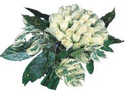 Erzincan çiçek gönderme sitemiz güvenlidir  9 Beyaz gül Özel kisiler için