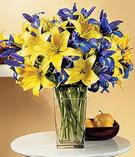 Erzincan hediye çiçek yolla  Lilyum ve mevsim  çiçegi özel